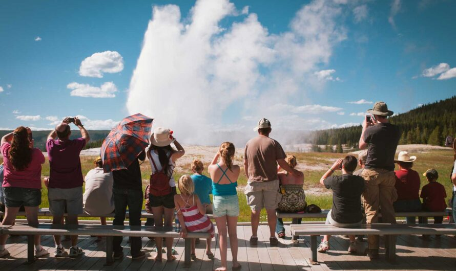 Now All You Need Is Your Smartphone to Get a Yellowstone Pass